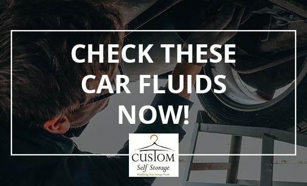 car fluids, auto, mechanic